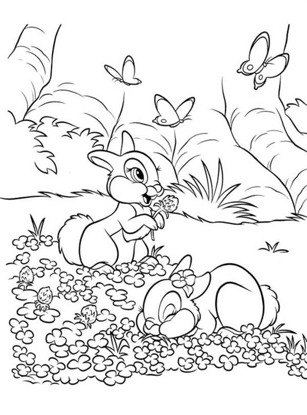 Bunnies Thumper And Miss Bunny Playing On The Flower Field Coloring Page