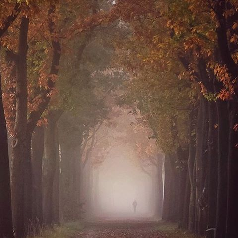 Schijndel, Holland ~ Photograph By @kitschers