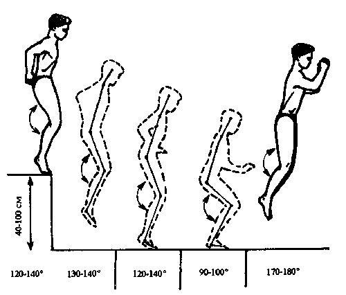 Плиометрический прыжок в глубину выполняется с высоты 50-70 см и при приземлении предполагает немедленное выпрыгивание за очень короткое время – 0,1-0,2 секунды.   Давайте рассмотрим механику такого прыжка.   При движении с высоты растет кинетическая энергия прыгающего, а в момент приземления мышцы бедра и голени сокращаются, чтобы затормозить падение. Речь идет о так называемом эксцентрическом сокращении мышц.   На упомянутые 0,1-0,2 секунды движение прекращается – наступает так называемая…