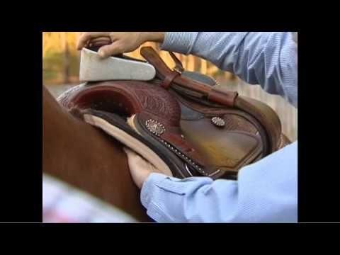 Sherry Cervi Explains Saddle Fit & Using 'Shims' - YouTube