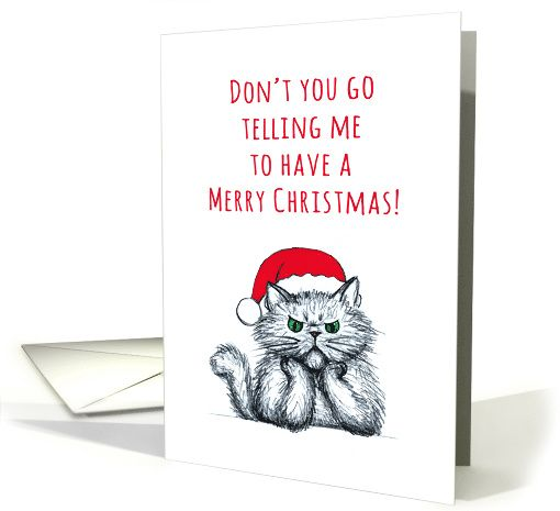Missing you at Christmas, cross cat sketch illustration, humor card