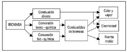 Procesos de conversión de Biomasa en energía