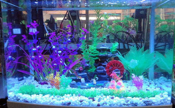17 best images about fish tank decor on pinterest for Aquarium decoration online