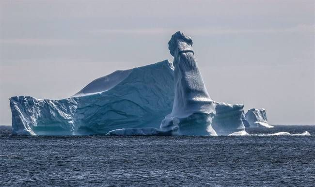 Jamie Ellison's botanical tour of northern Newfoundland provided a whole different kind of nature lesson when he looked out to a local bay and saw an iceberg with a distinctly masculine flourish.