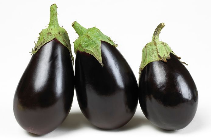 Eggplant photo | fall is my favorite season and who can resist it with all the fresh ...