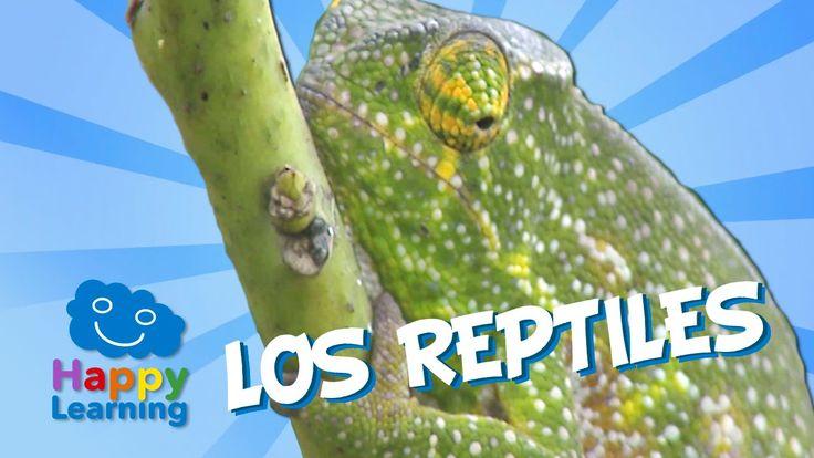 Los Reptiles   Videos Educativos para Niños