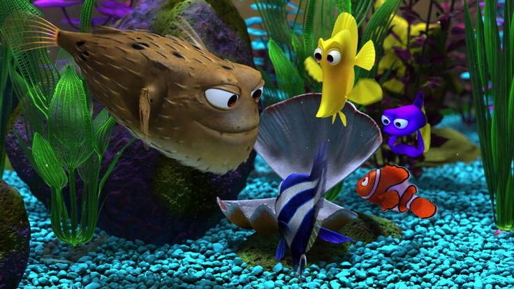 "DY00239 Finding Nemo - Animation Adventure Film Movie 43""x24"" Poster"