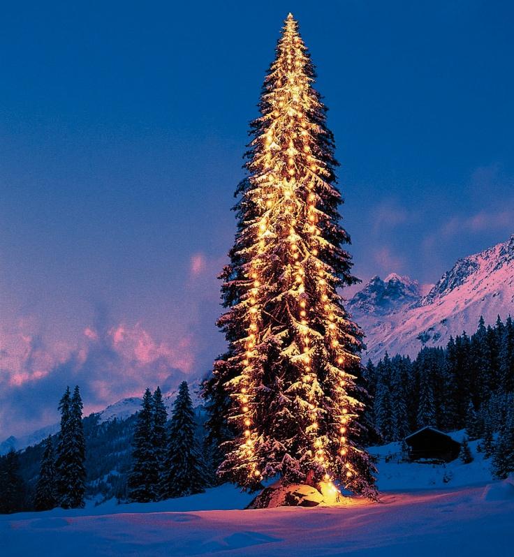 #Christmas is coming!