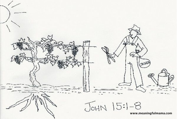 17 Best Images About John 15 On Pinterest
