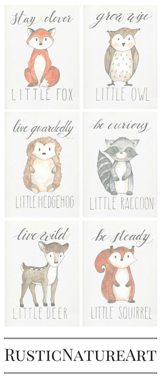 Cute little animals from Woodland Theme. Perfect to your loved little baby's nursery wall decor. Stay Clever Little Fox, Grow Wise Little Owl, Live Guardedly Little Hedgehog, Be Curious Little Raccoon, Live Wild Little Deer, Be Steady Little Squirrel. Buy these woodland wall art prints with great discount at www.rusticnatureart.com