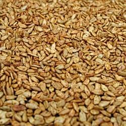 Roasted Sunflower Seeds recipeRoad Trip Snacks, Favorite Roads, Road Trips, Roads Trips, Roasted Sunflowers, Health Easy, Trips Snacks, Food Health, Seeds Esurancedreamroadtrip