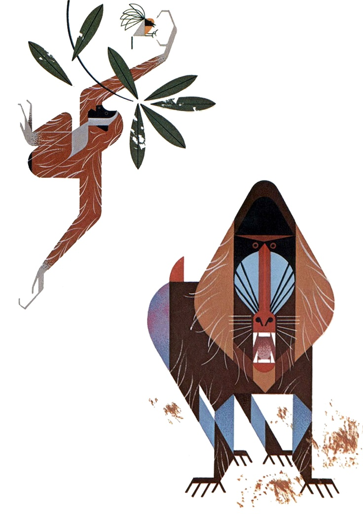 Charley Harper's colour schemes and layouts are so exquisite