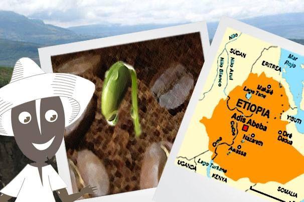 ¿ Sabíais que el primer conocimiento del #cafe proviene de Etiopia (África)? #coffee