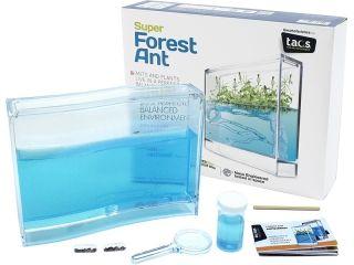 Super Forest Ant maur farm i gruppen Hobby & Fritid / Eksperimenter &…