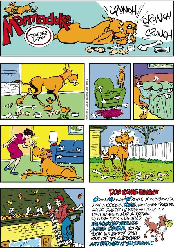marmaduke comic strips piano
