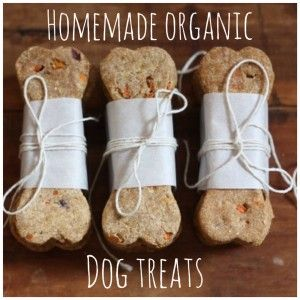 Organic Holiday Dog Treats (and for the rest of the year, too!)