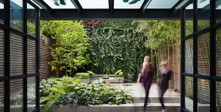 Shady courtyard plantingSmall Backyards, Green Wall, Urban Gardens, Backyards Oasis, Small Spaces, Cities Gardens, Small Gardens, Gardens Design, Modern House