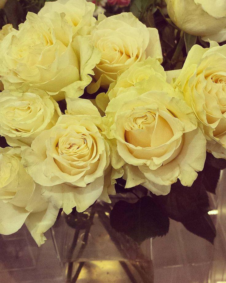 """""""Sarà anche simbolo di gelosia, ma a me le rose gialle piacciono tantissimo   """""""