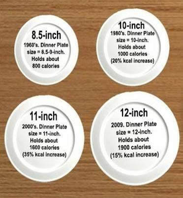 Portion Control - American Health's #1 Problem...