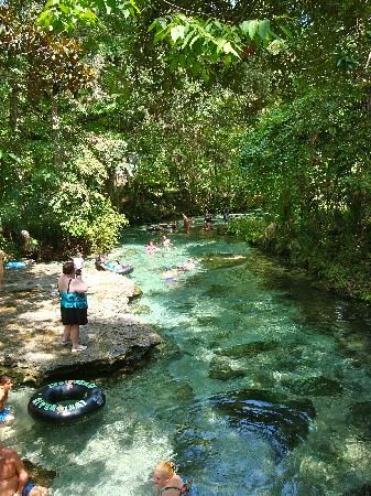 florida camping springs | Kelly Park - Apopka - Reviews of Kelly Park - TripAdvisor