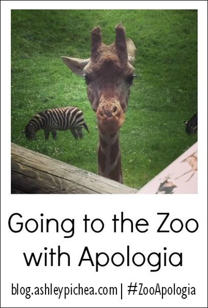 """Wanting to add some learning to your zoo trips this summer?? Check out the """"Going to the Zoo with Apologia"""" series on blog.ashleypichea.com for great resources and ideas! 
