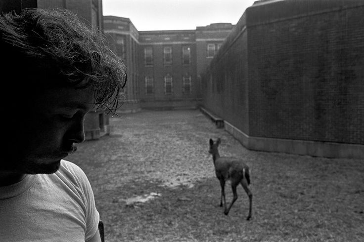 Lima State Hospital for the Criminally Insane, Lima, OH, 1981 from American We Eugene Richards