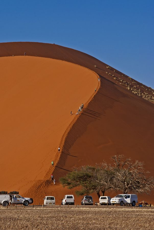 Dune 45, Sossuvlei, Namibia, Africa