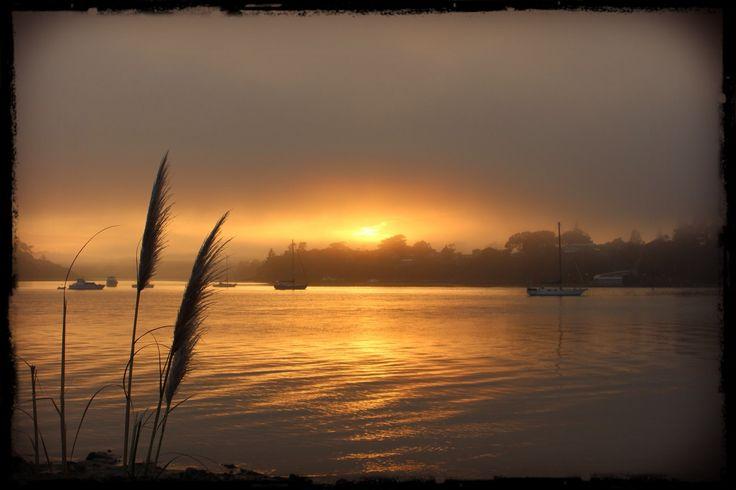 Rising sun, Hobsonville Point, Auckland. Photo: Su Leslie, 2015.