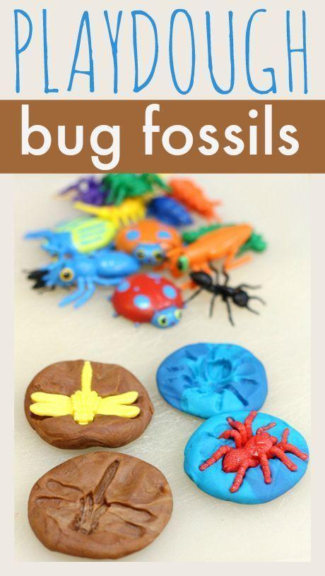 Playdough Bug Fossils Zoology 1 #homeschool science, bug craft, preschool craft, #preschool