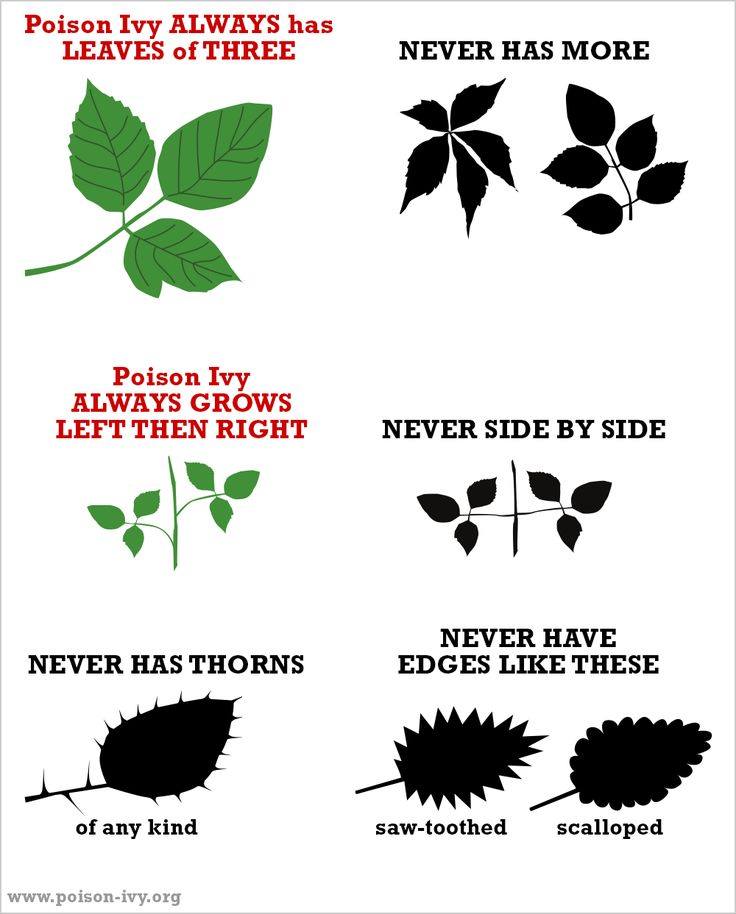 Poison Ivy Always/Never chart.
