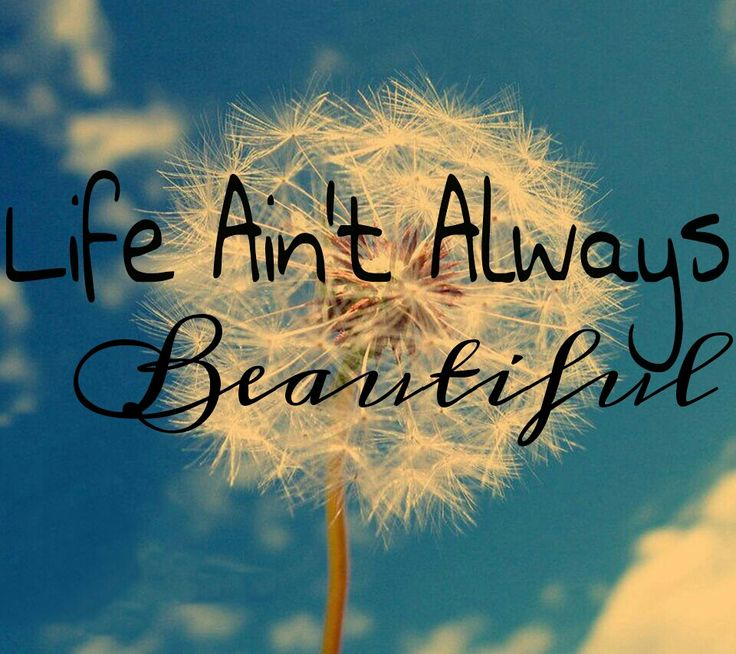 Life Beautiful Quotes Wallpapers 40 Beautiful Happiness Quotes With