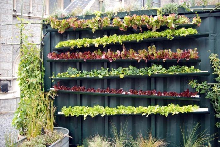 50++ Fabriquer un jardin vertical ideas in 2021