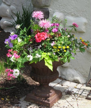 summer gaston urn - great planter ideas.