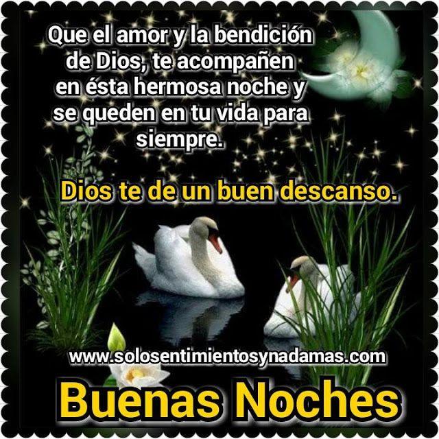 Buenas Noches Que El Amor Y La Bendicion De Dios Te Acompanen