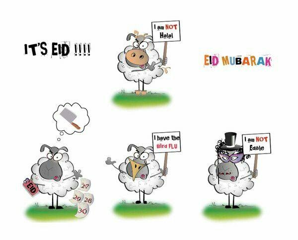 3id moubarak / happy eid / eid sheep / eid mabrouk