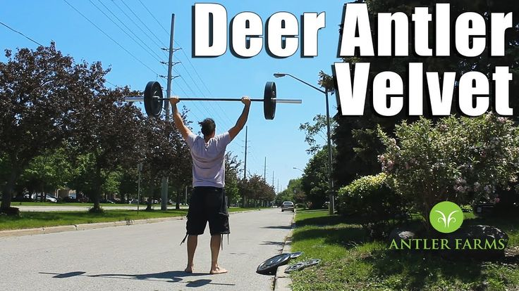 #Training session outside in the sunshine! Talking #DeerAntler Velvet Extract for IGF-1 and #recovery. Will keep you posted on Deer Antler Velvet's effects/results! #health #menshealth #fitness #youtube #vlog #vlogging #healthylifestyle #hgh #testosterone #igf1
