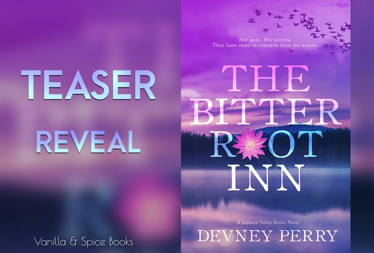 Teaser for The Bitterroot Inn by Devney Perry. I can't wait to read this one! This new romance is coming in January!