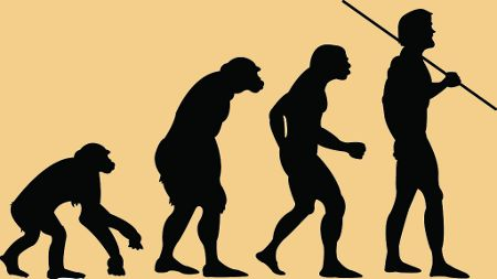 A Paleo diet, also known as paleolithic diet or caveman diet, is all about natural foods to help achieve great health and a perfect physique. The human body evolved for more than 2 million years with the food found in nature: game meat, fish, vegetables, wild fruits, eggs and nuts.