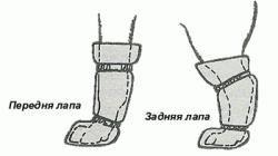 Где найти обувь для пекинеса