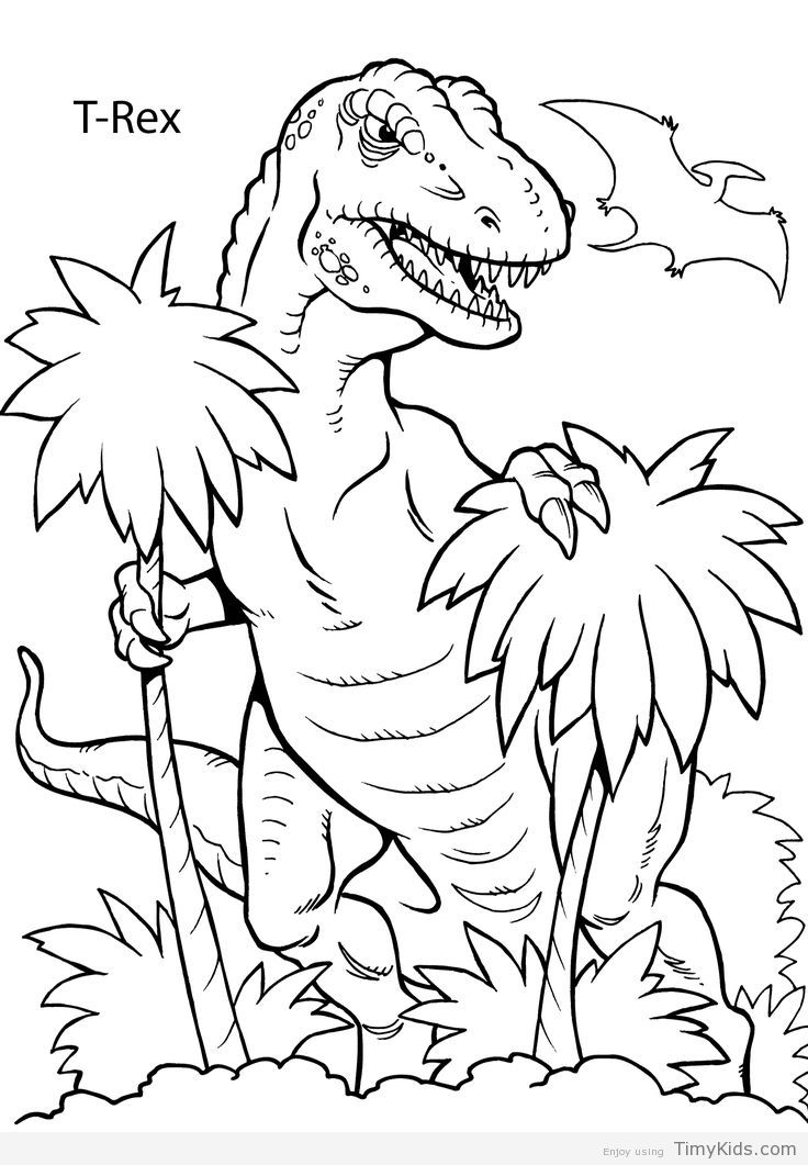Free Coloring Pictures Of Dinosaurs : 25 best ideas about dinosaur coloring pages on pinterest