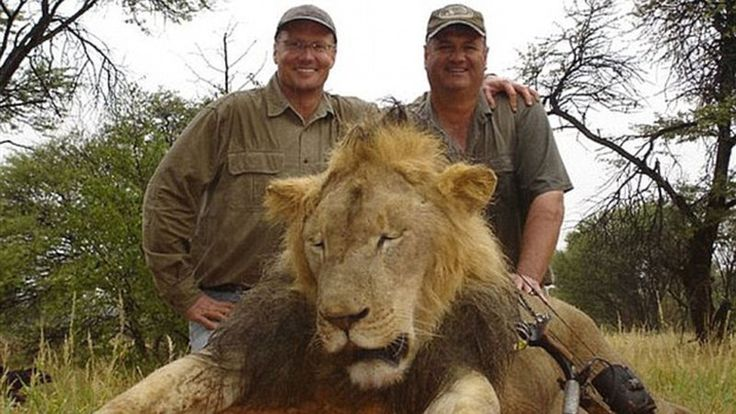 Petition · Walter James Palmer: Arrest and prosecute for the illegal baiting, hunting, and killing of Cecil the Lion · Change.org