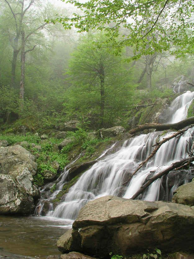 Shenandoah National Park | 15 National Parks You Need To See Before You Die