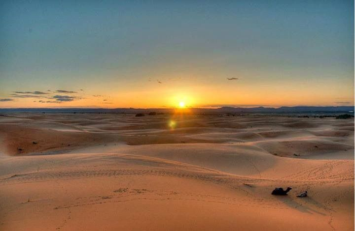 Culturele Studiereis Marokko Sahara Experience