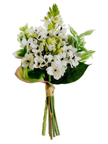 Cream White Star of Bethlehem Bouquet | DIY Wedding | Afloral.com Easy Return Policy