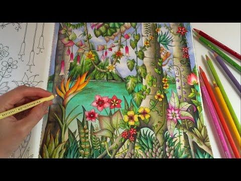 Sharing How I Color Tropical Flowers Leaves Monkey And Snake Using Prismacolor Premier Colored Pencils Coloring Book Magical Jungle By Johanna Basford