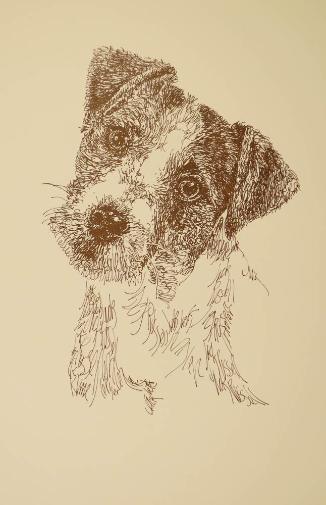 Jack Russell Terrier Rough: Dog Art Portrait by Kline - art drawn entirely from the words Jack Russell Terrier. He also can add your dog's name into the lithograph. drawdogs.com : drawdogs.com His collectors number in the thousands from over 20 countries and every state in the US. Kline's dog art has generated tens of thousands of dollars for dog rescues worldwide.
