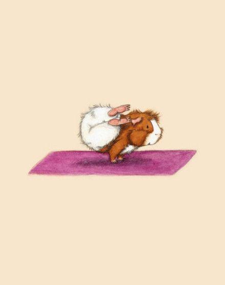The hamster doing yoga 3