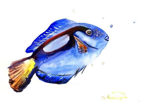 Blue Coral Angelfish,. Original watercolor painting, 12 X ...