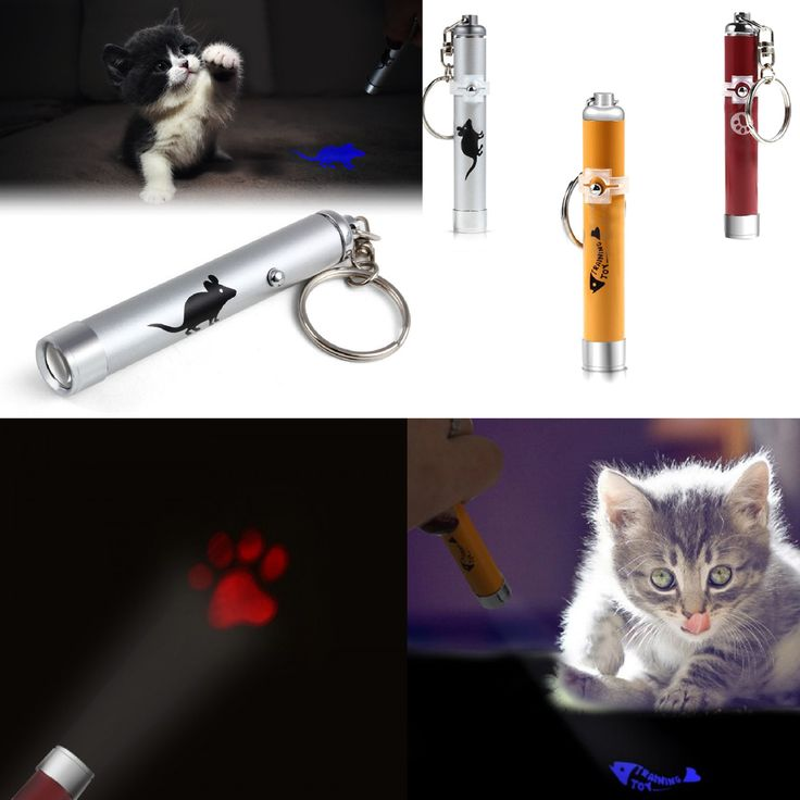 Hot Selling Pet Cat Toy Laser Pointer Pen Torch Mouse Animation Funny Light Weight Play Led Flash
