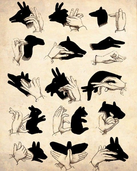 shadow puppets @Gus